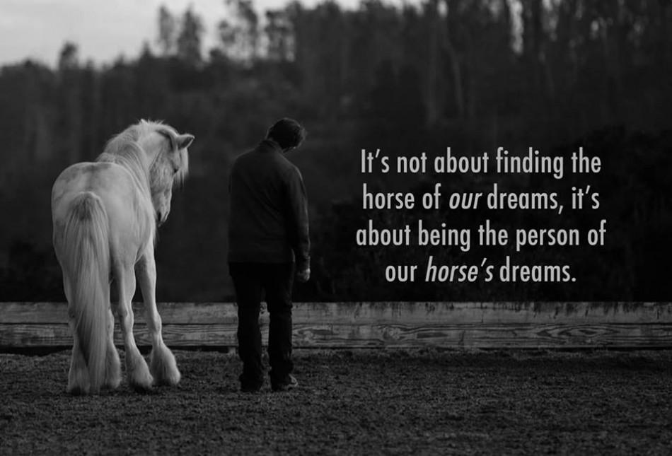 naturalhorses